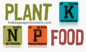 Blog Nutrients